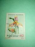 Марка цветок, фото №2