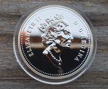 Канада 1 доллар 1990 г. Серебро. 300-летие экспедиции Генри Келси по Северной Америке., фото №3