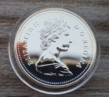 Канада 1 доллар 1987 г. Серебро. Третье плавание пирата Джона Дэвиса в 1587 году, фото №3