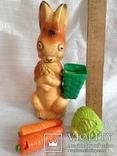 Заяц колкий пластик, фото №2
