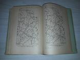 Полтавські говори 1957 Автограф Тираж 5000 В.С.Ващенко, фото №9