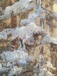 "Картина ""Закат в зимнем лесу"" Ю.Ю.Клевер(1850-1924гг), фото №3"
