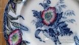 Тарілка декоративна 3/5, Ceres Davenport, Англія, Ф21,8 см, фото №4