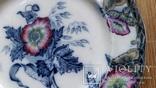 Тарілка декоративна 3/5, Ceres Davenport, Англія, Ф21,8 см, фото №5