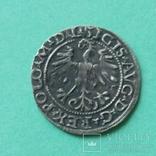 Полугрош Литва 1564 года ВКЛ Всадник, фото №12