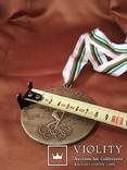 Олимпиада в Лондоне 1948 год/Медаль/Копия, фото №7