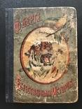 1911 Ф. Берге. Иллюстрированная Естественная история. Животные Растения Минералы, фото №3