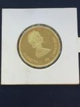 Монета Канада 100 долларов 1987 зимняя олимпиада Calgary, фото №2