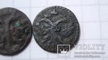 Полушки 1720 год  разные, фото №6