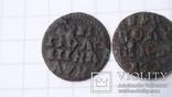 Полушки 1720 год  разные, фото №8