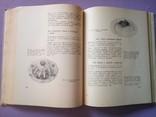 Диетические блюда. И. Д Ганецкий Москва 1969 год., фото №11