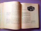 Диетические блюда. И. Д Ганецкий Москва 1969 год., фото №12