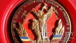 """Памятная медаль """"От пожарных Румынии"""", фото №6"""