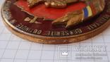 """Памятная медаль """"От пожарных Румынии"""", фото №9"""