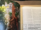 Крымские вина. Серия Путешествие в легенду. Изд. Жигульского Большой формат., фото №10