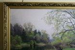 Картина  Шелудько Л. Н.   126х80, фото №4