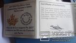 10  долларов  2017  Канада озеро Пейто  серебро, фото №7