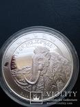 Первая ! Мамонт Ганы Гиганты ледникового периода 5 седи, фото №3