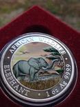Слон Сомали 100 шиллингов 2019 г. 1oz 999.9 пробы унция Африканский слон, фото №2