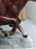 Статуэтка Кони, фото №8
