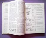 Кулинария Н. И Губа, Б. Г Лазарев, справочное пособие 1985 год, фото №10
