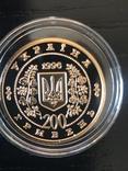 Тарас Шевченко золото 1996, фото №7