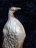 Пташка, фото №5