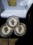 Три срібних монети 2 доллара, фото №2
