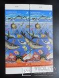 Фауна моря. Выпуск ООН. 1992 г. Океан.  кварт MNH, фото №3