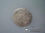 Гданьский грош 1531 г, фото №5