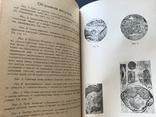 1920 Одесса. Одесский сборник по сыпному тифу, фото №11