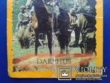 Hercules, Daphus (Стикер, Merlin collections - №23 и 24)., фото №4