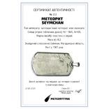 Підвіска-жетон із залізо-кам'яним метеоритом Seymchan, із сертифікатом, фото №3