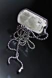 Підвіска-жетон із залізо-кам'яним метеоритом Seymchan, із сертифікатом, фото №4