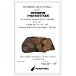 Залізний атаксит NWA 859 (Taza), 2,4 г., з сертифікатом автентичності, фото №10
