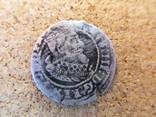 Гданьський грош, фото №2