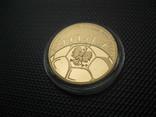 100 злотых 2006 год ЧМ по футболу, фото №8