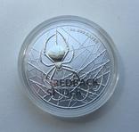 Красноспинный паук Австралия 1-я монета в серии, фото №2