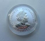 Красноспинный паук Австралия 1-я монета в серии, фото №7