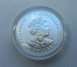 Красноспинный паук Австралия 1-я монета в серии, фото №8