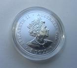 Красноспинный паук Австралия 1-я монета в серии, фото №9
