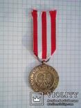 Польша. Медаль Победы и Свободы, фото №3