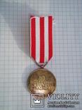 Польша. Медаль Победы и Свободы, фото №4