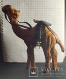 Верблюд (кожа), фото №6