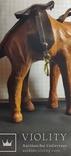 Верблюд (кожа), фото №13