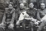 Фото группа терапевтов Рига 1946 год, фото №8