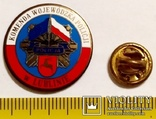 Значок фрачник полиции Люблинского воеводства Польши, фото №3