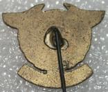 Знак Военно-воздушных сил Ирака.,тяжелый, фото №3