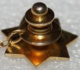 Петличный зажим для галстука шерифа полиции округа Санта Клара (США), фото №5