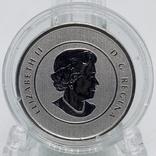 Канада 20 долларов, 2012 Волшебный олень серебро UNC, фото №3